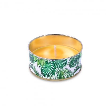 "Citronella Cup ""Jungle"" 44/100"